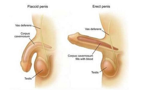 做阴茎延迟术治疗效果怎么样?效果保持时间多久?