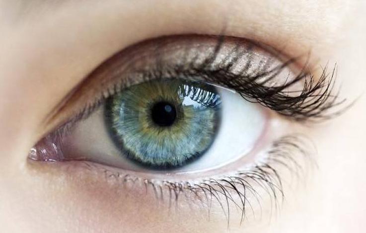 双眼皮手术有哪些的种类