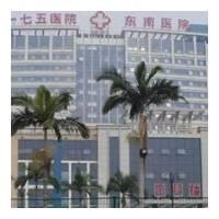 漳州175医院整形美容科