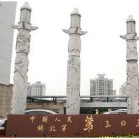 中国人民解放军第三0三医院整形科